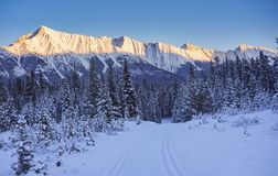 Kananaskis Cross Country Ski Trail Stock Photo