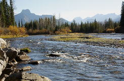 Kananaskis river Alberta  Royalty Free Stock Photos