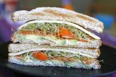 kanapka jarosz zdjęcie stock