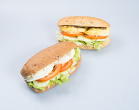 kanapka lub smakowita jajeczna kanapka na tle Fotografia Stock