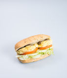 kanapka lub smakowita jajeczna kanapka na tle Zdjęcia Royalty Free