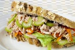 kanapka tuńczyk Fotografia Stock