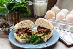 Kanapka z jajkiem i wysuszonymi pomidorami Fotografia Stock