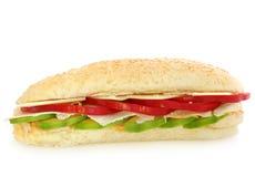 kanapka z kurczakiem Obraz Stock