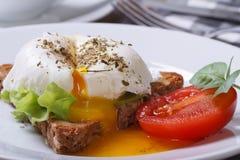 Kanapka z sałatką, otwiera kłusującego jajko Obraz Royalty Free