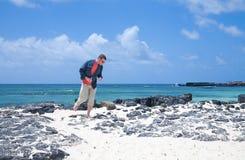 kanariefågelfuerteventura öar Royaltyfri Fotografi