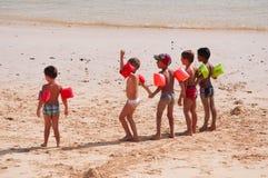 kanariefågelfuerteventura öar spain Arkivfoto