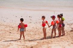 kanariefågelfuerteventura öar spain Royaltyfri Foto