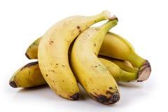 Kanarische Banane Lizenzfreie Stockfotografie