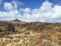 Kanarische Inseln Spanien Landschafts-Fuerteventuras Lizenzfreie Stockfotos