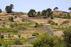 Kanarische Landschaft mit landwirtschaftlicher Straße der Wicklung Stockfoto