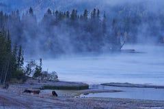 Kanas湖 免版税图库摄影