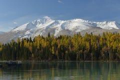 Kanas-Fluss in Xinjiang China Lizenzfreies Stockbild