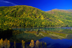 Kanas Lake china Stock Photography