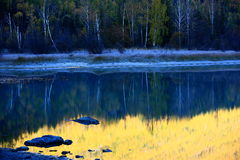 Kanas Lake Nature Royalty Free Stock Images