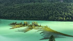 Kanas Lake Royalty Free Stock Photo