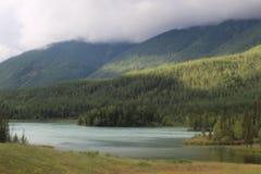 Kanas. The landscape of kanas lake Stock Images