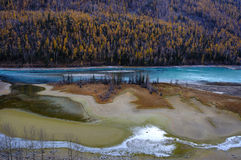 Kanas river. Shot at Kanas, Xinjiang, China in the autumn stock photos