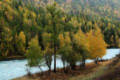 Kanas river Royalty Free Stock Images