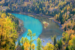 Kanas River Bend. In autumn Royalty Free Stock Images