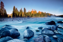 Kanas river in the morning, Xinjiang, China Royalty Free Stock Photos
