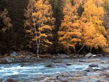 Kanas See im Herbst Lizenzfreie Stockfotos
