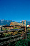 Kanas squatter. Kanas around the cabin, quiet and comfortable life stock photography