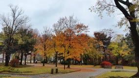 Kanazawa autumn Royalty Free Stock Photos