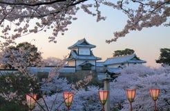 Kanazawa för körsbärsröd blomning slott Kanazawa Japan Royaltyfria Bilder