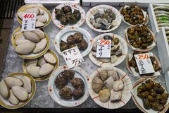 Kanazawa - Japan, June 8, 2017: Dishes with fresh diversity of s Royalty Free Stock Images