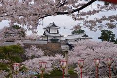 Kanazawa slott till och med Cherry Blossoms - Kanazawa, Japan Arkivbild