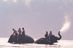 KANCHANABURI, THAILAND - FEB, 2018 : tourism ride the elephant to take a shower at Kwai river, travel and adventure activity in Th Royalty Free Stock Photos