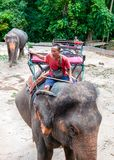 Kanchanaburi, Thailand - May 23, 2014: Mahout and his elephant waiting to start the tours with tourists on May 23, 2014 in Kanchan Royalty Free Stock Photography