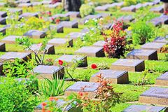 Kanchanaburi War Cemetery, Kanchanaburi, Thailand. Kanchanaburi War Cemetery is the main prisoner of war cemetery for victims of Japanese imprisonment while royalty free stock photo