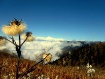 Kanchanzonga Стоковые Изображения RF