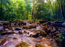 Kanching river. This riverside taken deep in to forest at selangor, malaysia royalty free stock photo