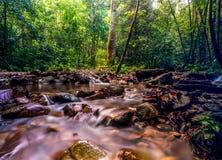 Kanching river Royalty Free Stock Photo