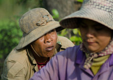 KANDAL PROVINCE, CAMBODIA - DECEMBER 31, 2013 - Female and Male Royalty Free Stock Photography