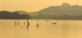 kandalama湖的, dambulla,斯里兰卡渔夫 免版税库存照片