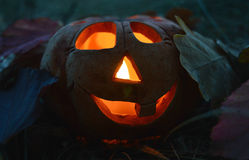 Kandelaarpompoen met een brandende binnen kaars, onder gevallen bladeren in dark, symbool van Halloween Stock Fotografie