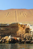 Kandelaber av Anderna i den Pisco fjärden, Peru Arkivbilder