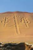 Kandelaber av Anderna i den Pisco fjärden, Peru Royaltyfri Foto