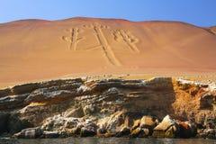 Kandelabry Andes w Pisco zatoce, Peru Zdjęcie Stock