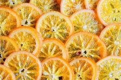 Kanderad apelsinbakgrund Royaltyfria Bilder