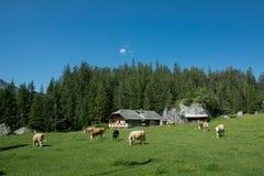 Kandersteg, Швейцария Стоковое Изображение