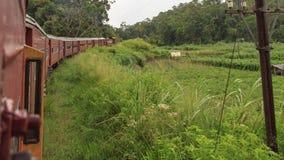 Kandy à viagem de trem de Ella - Sri Lanka foto de stock