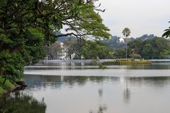 Lake Kandy - Sri lanka. Kandy Lake , also known as Kiri Muhuda or the Sea of Milk, is an artificial lake in the heart of the hill city of Kandy, Sri Lanka, built stock photos