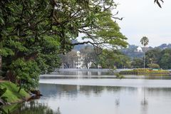 Lake Kandy - Sri lanka. Kandy Lake , also known as Kiri Muhuda or the Sea of Milk, is an artificial lake in the heart of the hill city of Kandy, Sri Lanka, built royalty free stock photo