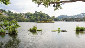 Lake Kandy - Sri lanka. Kandy Lake , also known as Kiri Muhuda or the Sea of Milk, is an artificial lake in the heart of the hill city of Kandy, Sri Lanka, built stock photo
