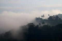 Kandy-Morgen-Nebel Stockbilder